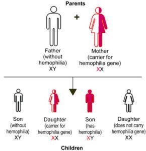 Hemophilia-Figure-1