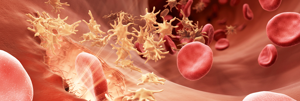 INTRODUCTION TO BLEEDING DISORDERS